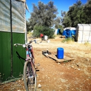 La lezione di Diakité. È iniziata la campagna olivicola del 2020 a Campobello di Mazara, che ascoltiamo le parole emblematiche di Diakité